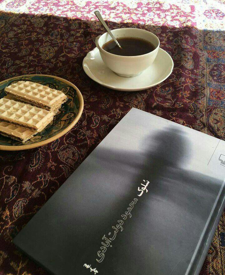 دانلود رایگان کتاب PDF سلوک نوشته محمود دولت آبادی - پارس تاتس.....داستان عاشقانه